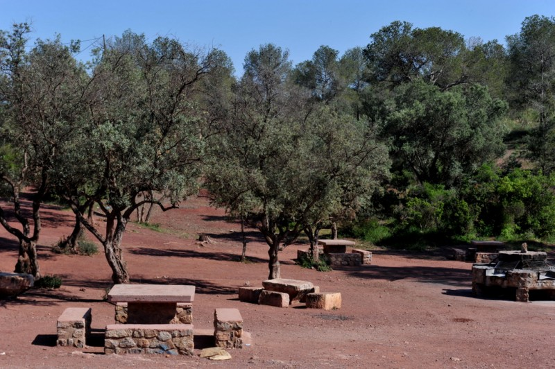 El Grifo Picnic Area in the Sierra Espuña