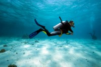 Adventure Divers and Activity Center based in the South of the Mar Menor in La Manga Club resort