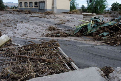 <span style='color:#780948'>ARCHIVED</span> - Murcia floods, thousands of animals have died