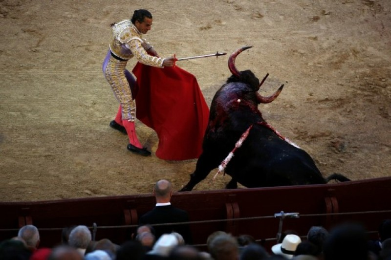 Spanish bullfighter gored to death in French ring
