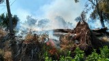 Three wild fires in two days in the Region of Murcia