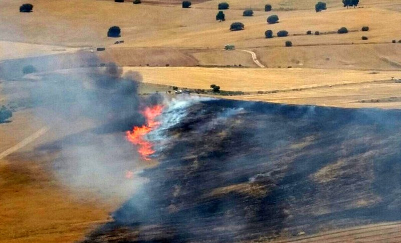 19 hectares affected by Caravaca wild fire