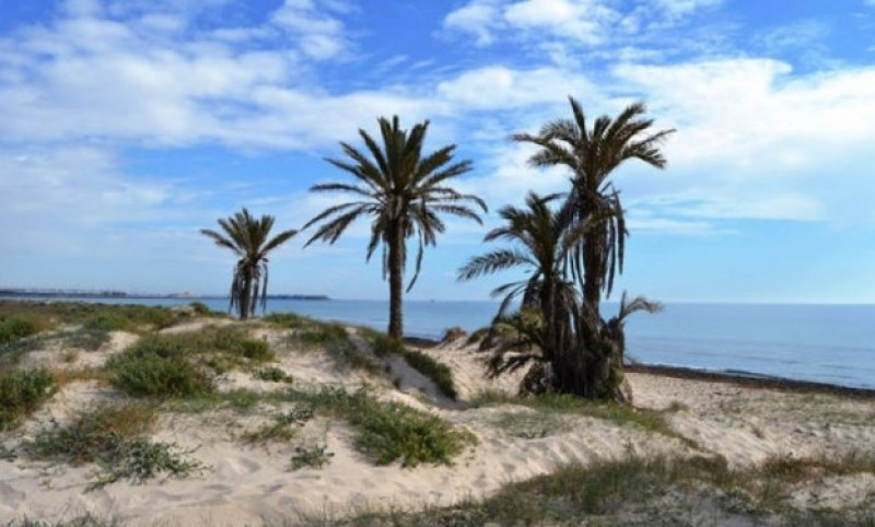 750-euro fines for urinating in the sea at the beaches of San Pedro del Pinatar