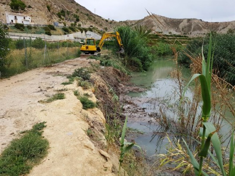 Battle against invasive canes continues along the Segura River