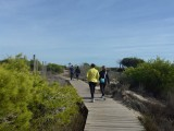 24th September free guided walking route through the salinas natural park in San Pedro del Pinatar