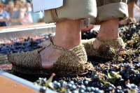 1st October El Zacatin artisan market in Bullas celebrates the grape harvest
