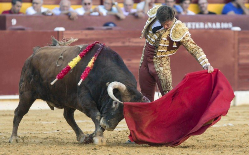 Murcia president reiterates support for bullfighting