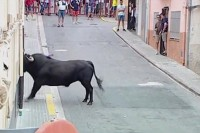 Bull runner gored to death in Valencia