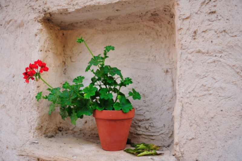 Accommodation in Lorca: country cottages and rural properties to let