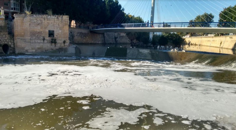 <span style='color:#780948'>ARCHIVED</span> - Concern in Murcia as dead fish appear in a foam-covered River Segura