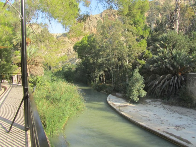 The River Segura in Archena