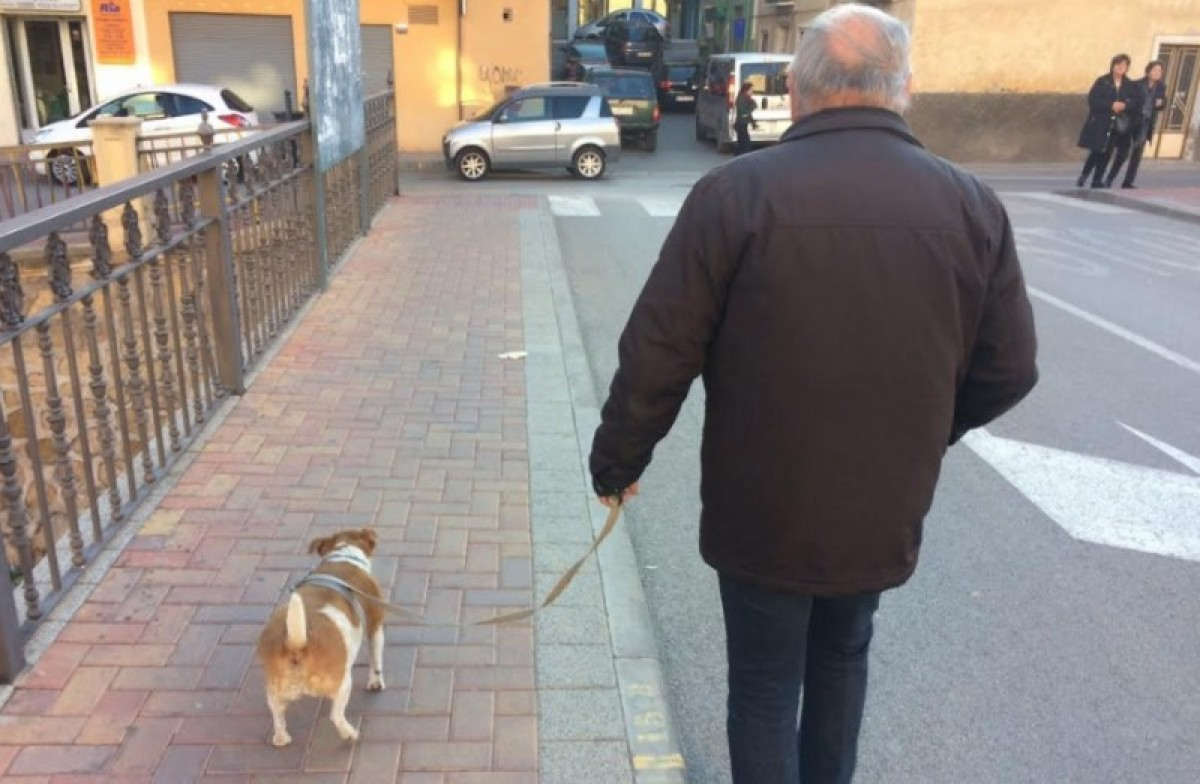 Totana clamps down on dog mess and un-chipped pets