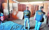12 arrested in Murcia as part of massive illegal tobacco swoop