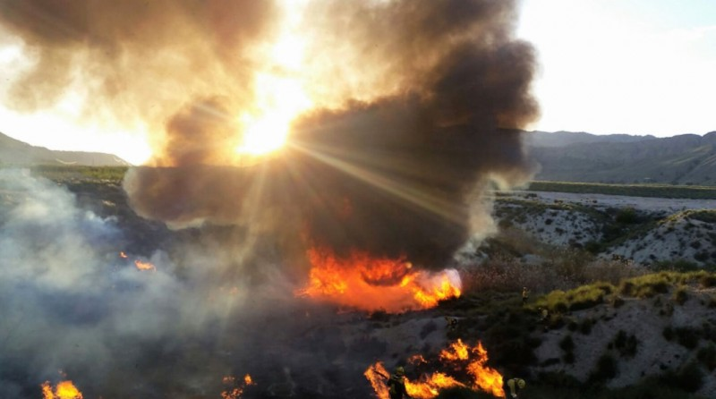 <span style='color:#780948'>ARCHIVED</span> - 3 hectares razed by wild fire in the Ricote valley