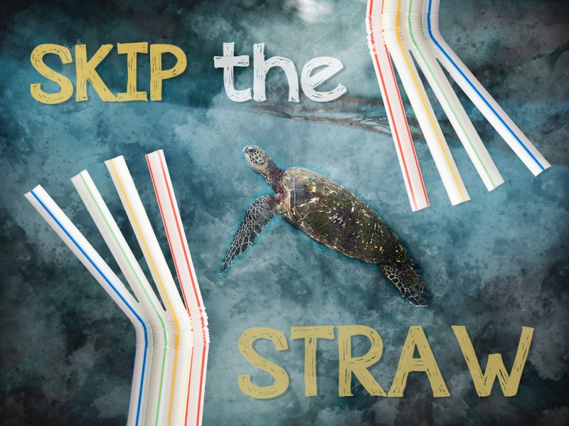 <span style='color:#780948'>ARCHIVED</span> - UK Government plans to ban sale of plastic straws, drink stirrers and plastic stemmed cotton buds