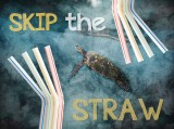 UK Government plans to ban sale of plastic straws, drink stirrers and plastic stemmed cotton buds