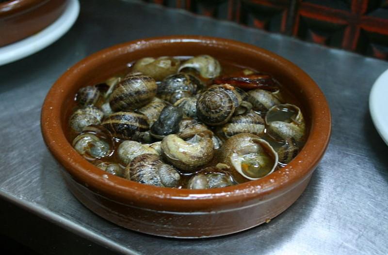 Huge growth in snail farming in Spain!