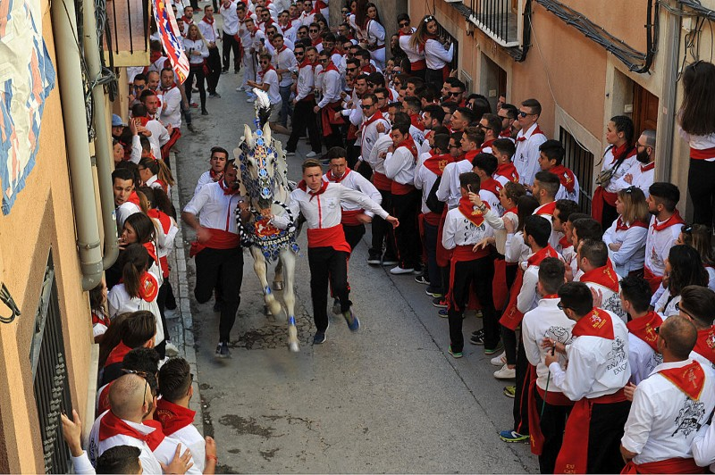 The peña Aspirante wins Running of the Wine Horses in 8.2 seconds