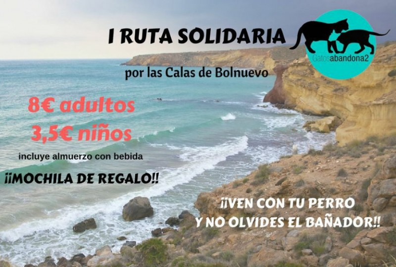10th June, solidarity walk in Bolnuevo to support stray and abandoned cat adoption