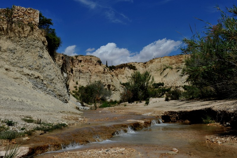 1st July Abanilla: Free guided tour to the source of the River Chícamo and watermill