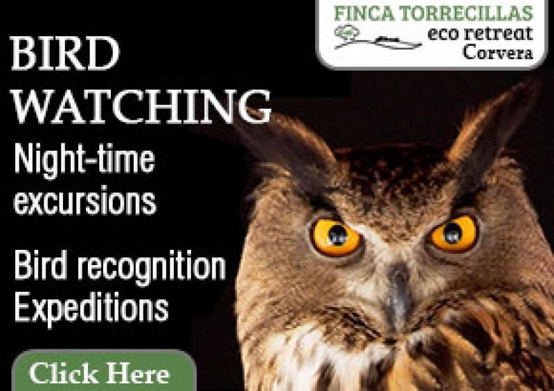 Eco-Finca Torrecillas offers birdwatching, and wildlife discovery experiences in the Murcian countryside.