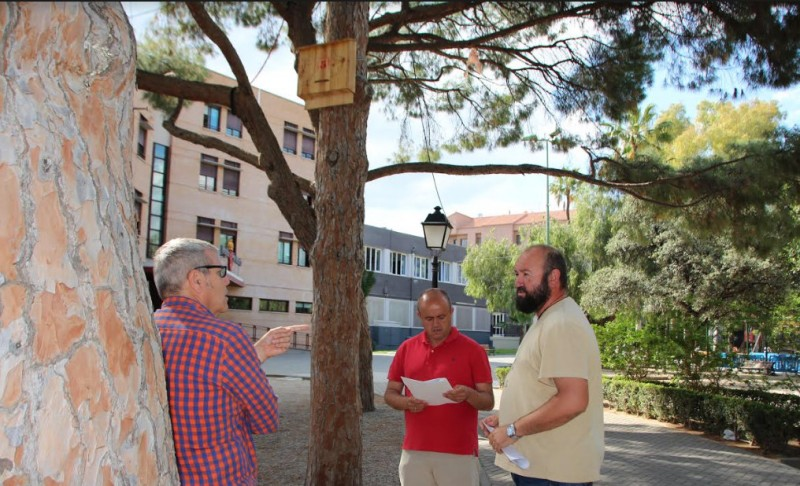 Bats to the rescue as Alhama Town Hall declares war on mosquitos