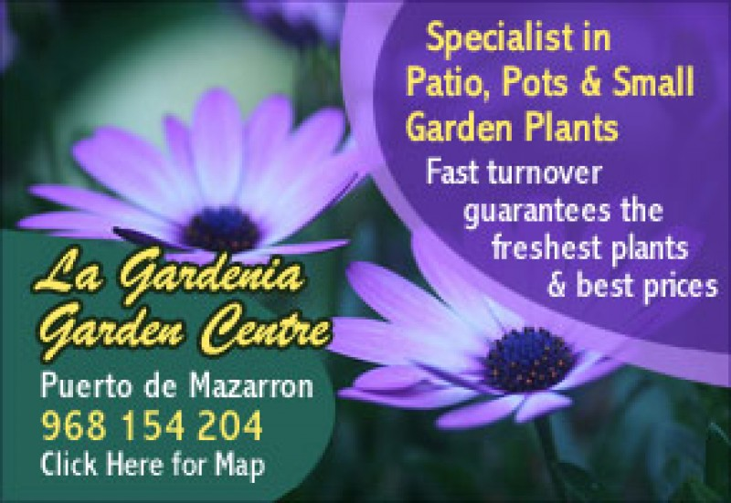 La Gardenia Garden Centre Puerto de Mazarron for garden and patios plants both indoors and out.