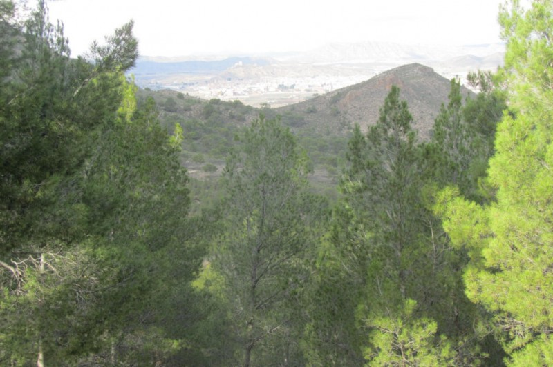 700,000 euros to be invested in the natural landscape of Jumilla
