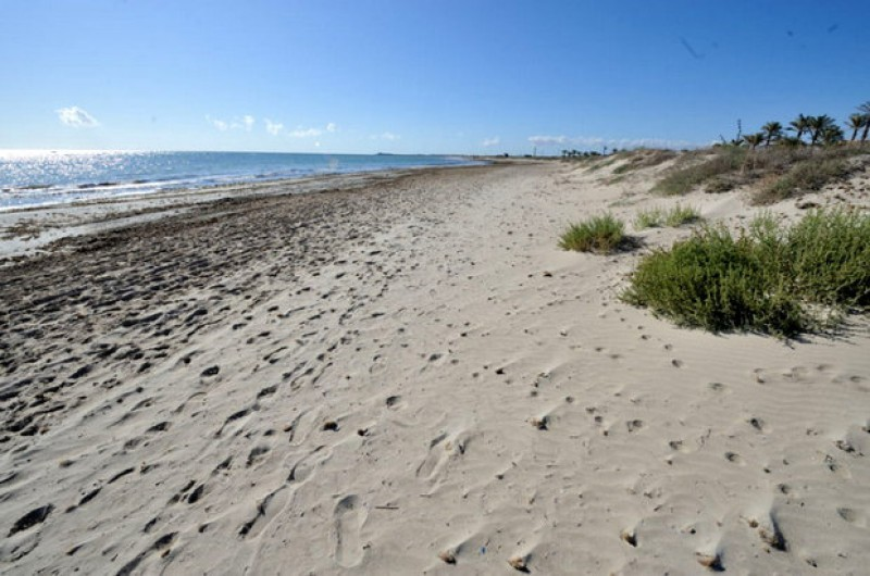 Blue Flag and Q for Quality beaches in San Pedro del Pinatar 2018