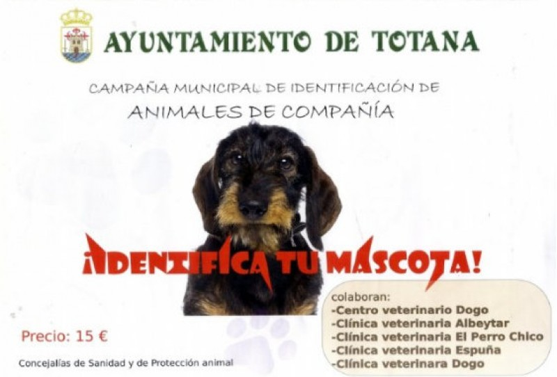 Only 15 euros for pet ID microchips in Totana