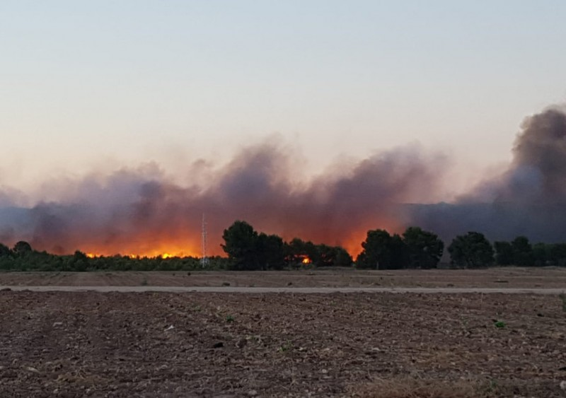 39 degrees in Calasparra as forest fire rages in north-west Murcia