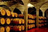 Open daily: La Ruta del Vino or Wine Route of Jumilla: visiting the bodegas
