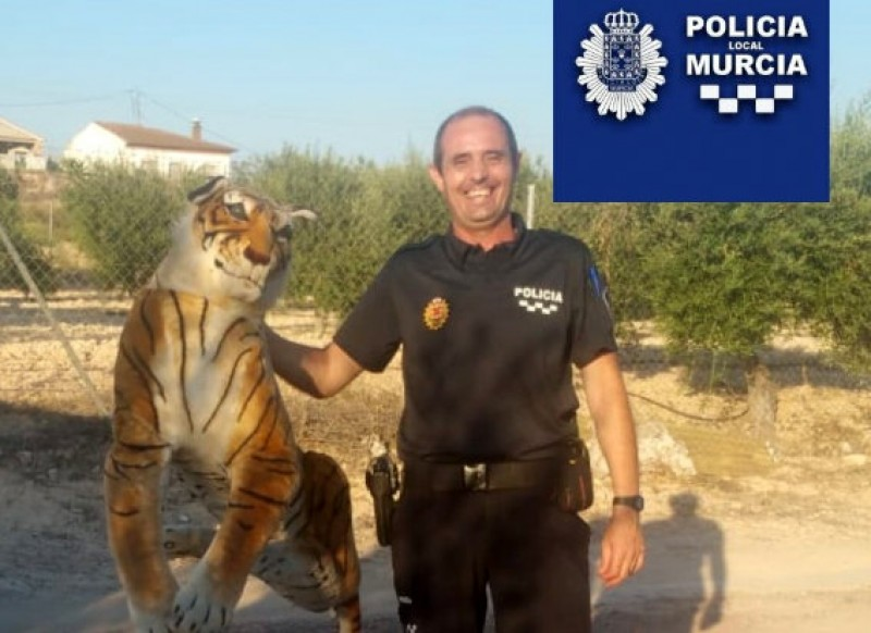 <span style='color:#780948'>ARCHIVED</span> - Tiger sighting in Sangonera gives local resident a fright