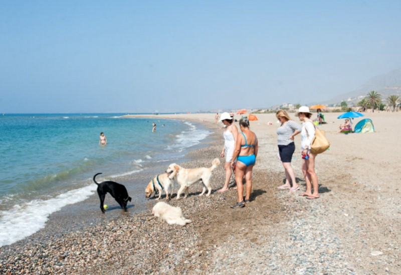 40 Q for Quality beaches in the Costa Cálida for the summer of 2018