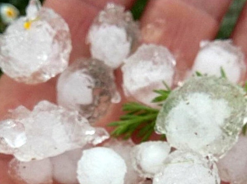 Fruit and veg growers in Murcia count the cost of Thursday's storm