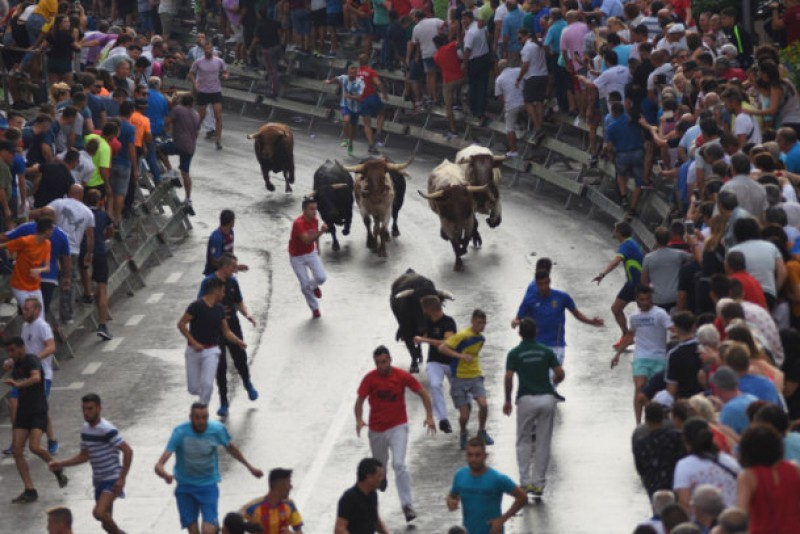 <span style='color:#780948'>ARCHIVED</span> - Rain responsible for serious injury in the first Calasparra bull run