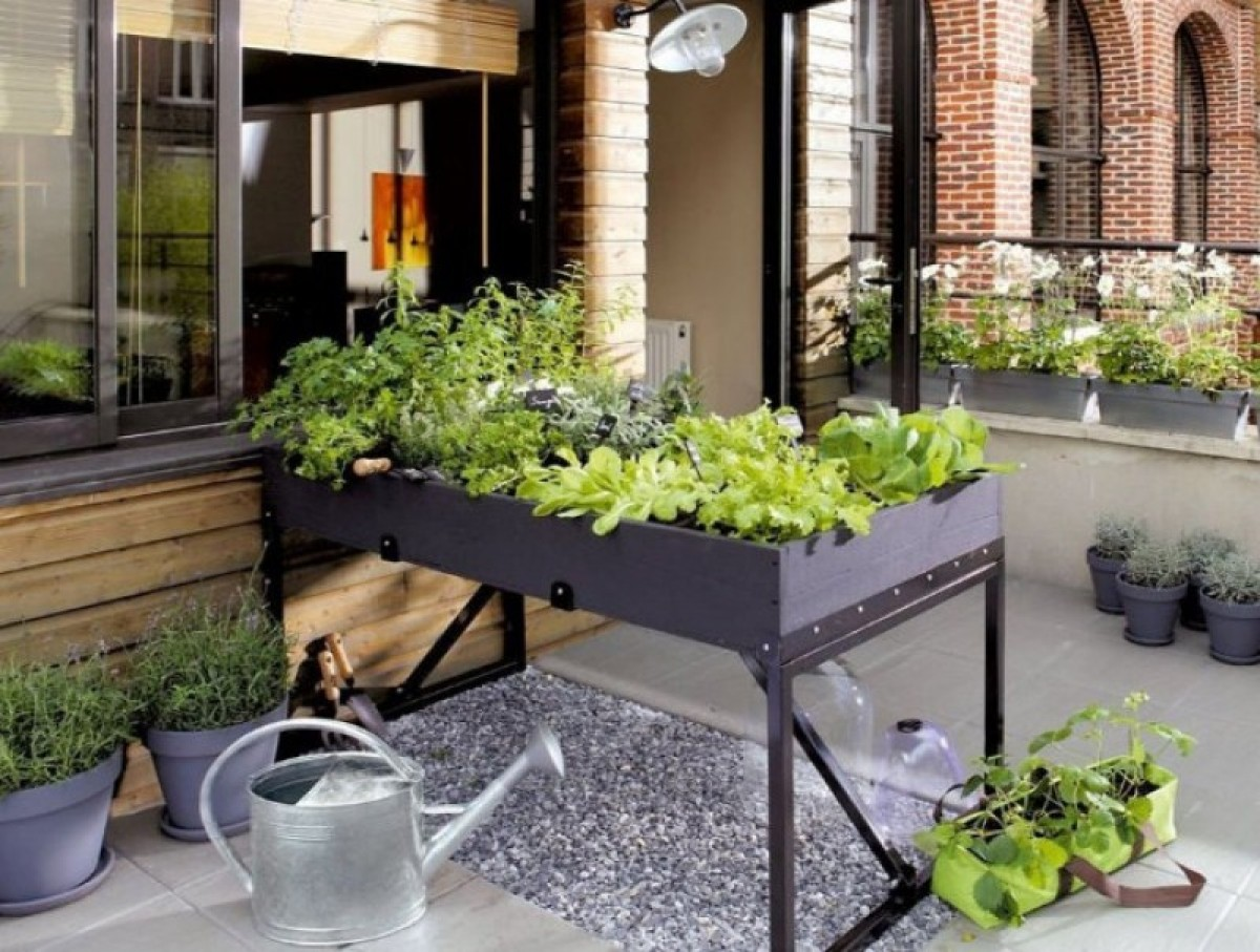 29th September, free workshop at Leroy Merlin in Murcia: how to create a balcony or terrace vegetable garden