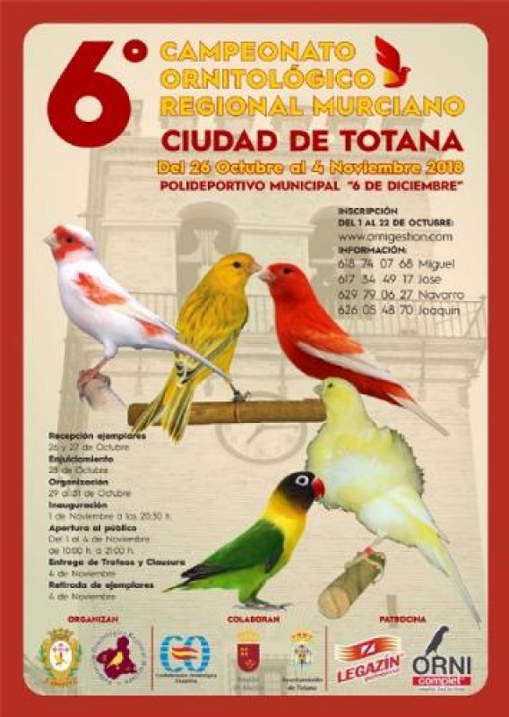 1st to 4th November 2018 regional ornithological competition in Totana