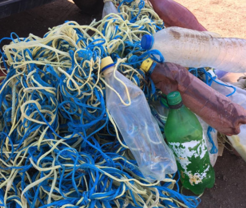 <span style='color:#780948'>ARCHIVED</span> - Lucky loggerheads return to the Mediterranean after being caught up in plastic waste and fishing lines