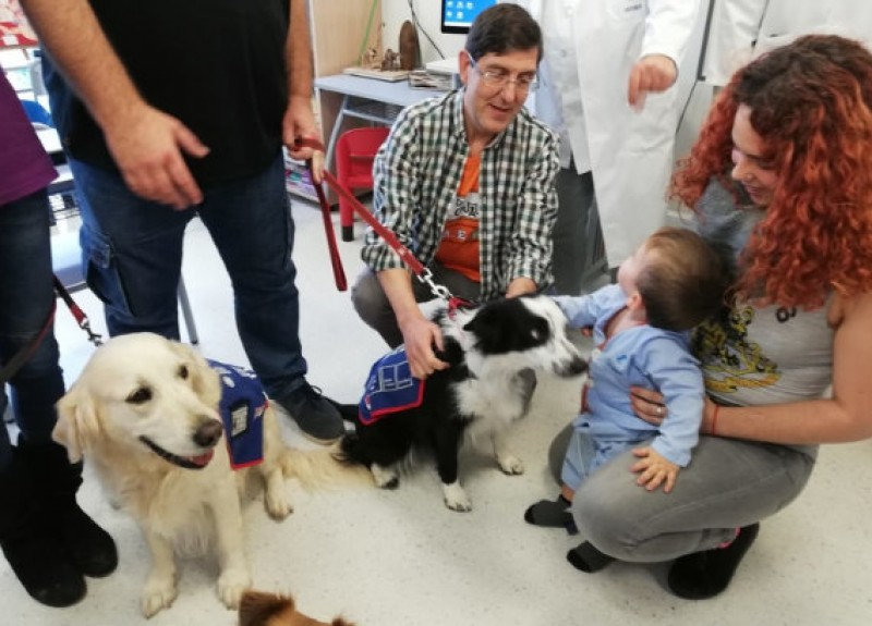 <span style='color:#780948'>ARCHIVED</span> - Dog therapy for child patients begins at the Santa Lucía hospital in Cartagena