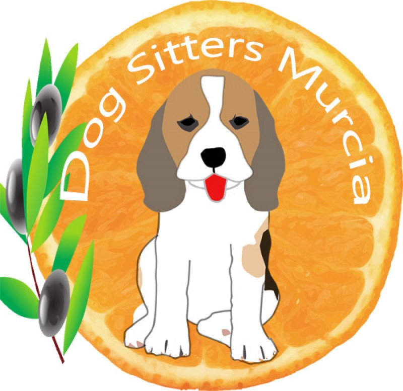 Dog Sitters Murcia a great alternative to kennels located close to Corvera airport