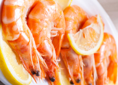 <span style='color:#780948'>ARCHIVED</span> - Temporary ban on Mar Menor prawn fishing