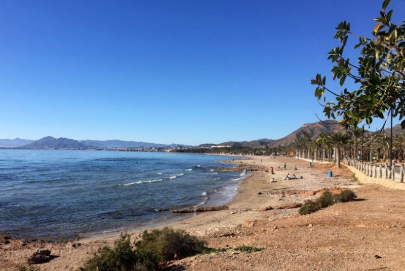 Beach weather in the Costa Cálida on New Year's Day!