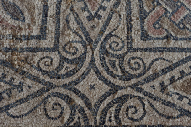 27th January Free guided tour of the Roman Villa of Villaricos in Mula