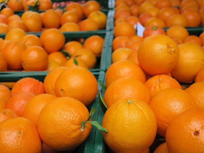 Low market prices tempt orange growers in Murcia to uproot their trees
