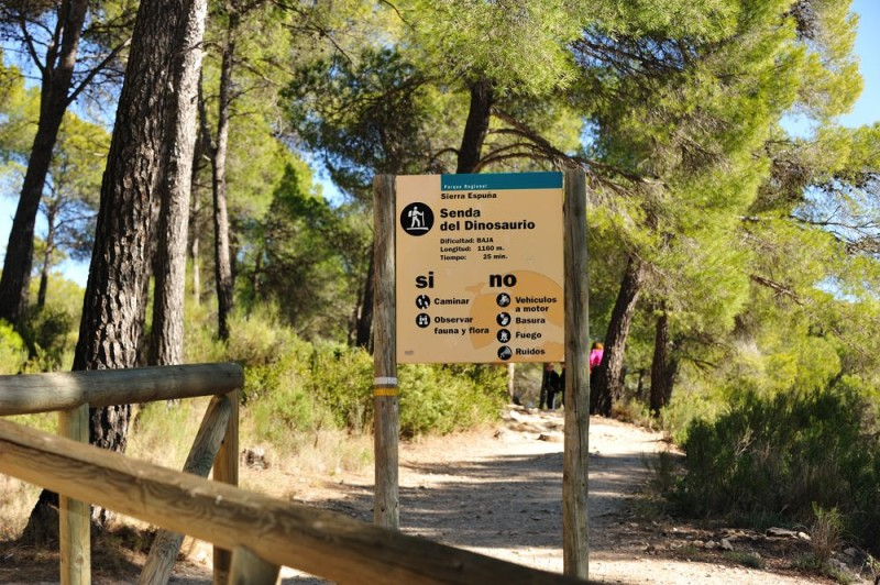 Sunday 10th March FREE dinosaur walk in the Regional Park of Sierra Espuña