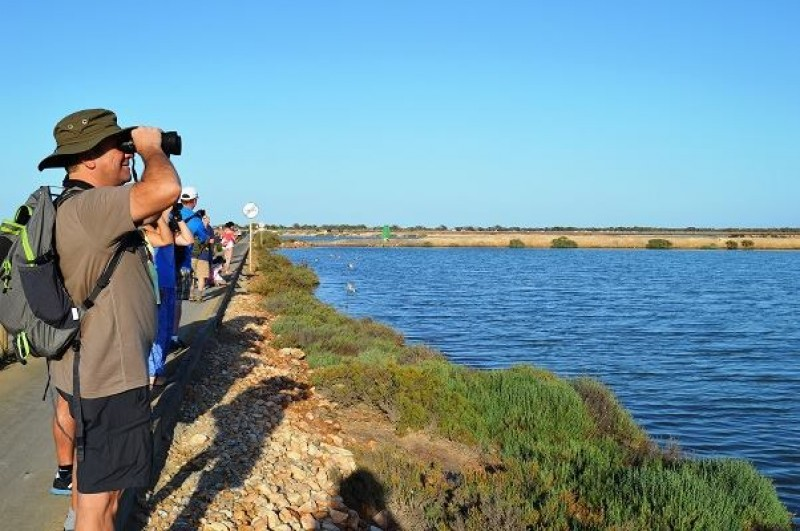Sunday 31st March Free guided walk in the Regional Park of the Salt Flats of San Pedro del Pinatar