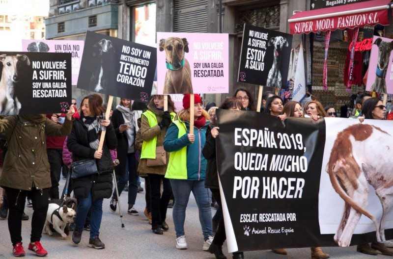 <span style='color:#780948'>ARCHIVED</span> - Protests against cruelty to greyhounds all over Spain as the hunting season ends