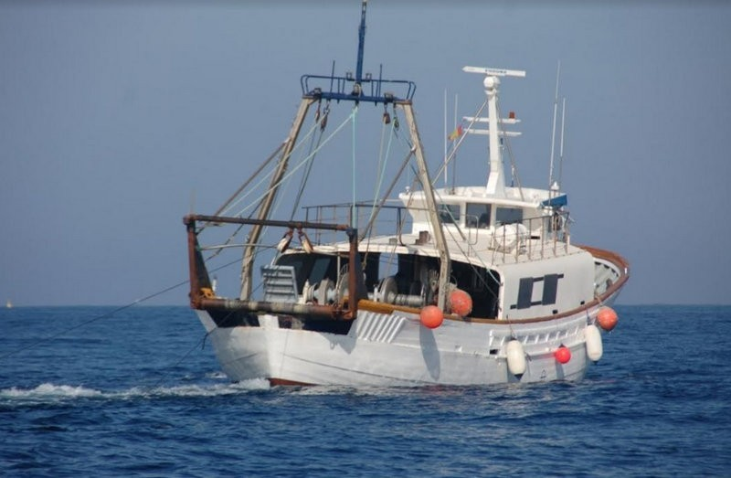 Tuna and swordfish prices soar in Cartagena due to reduction in fishing fleet