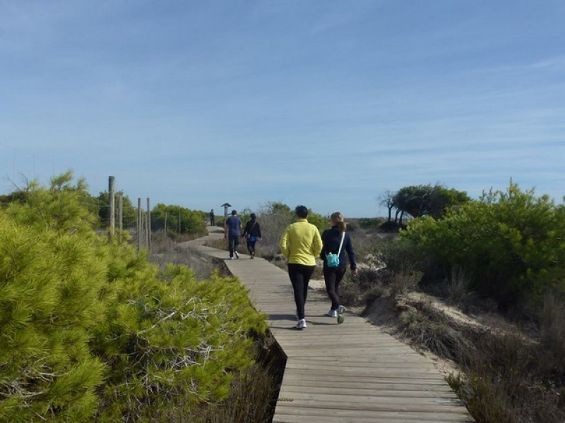 24th February 4.3km free guided route in San Pedro del Pinatar Salinas natural park